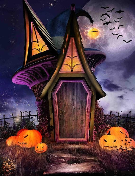 Halloween Pumpkin Lantern Photography Backdrops The Horror Night Bats Halloween Party B Halloween Backdrop Halloween Photography Halloween Photography Backdrop