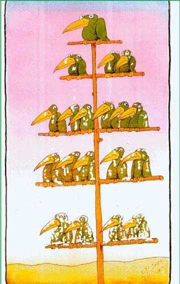 Organizational Chart  Courtesy Of The Freeman Institute  Maybe