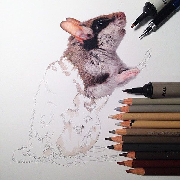 Realistic Animal Drawings Surrounded By The Tools Used To Create - Artist creates amazing hyper realistic 3d drawings