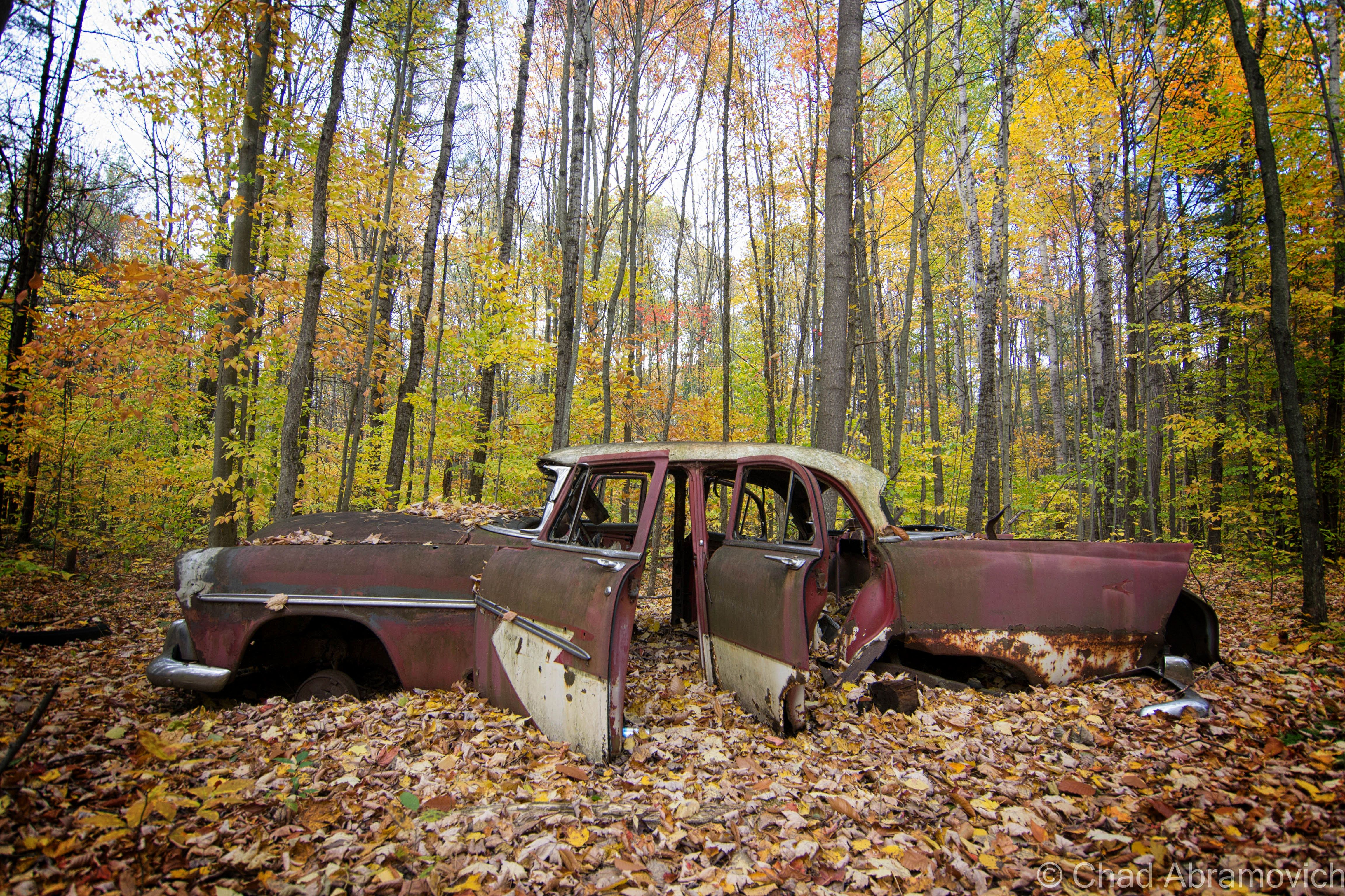 Pin by anthony on junked classic vehicles abandoned cars