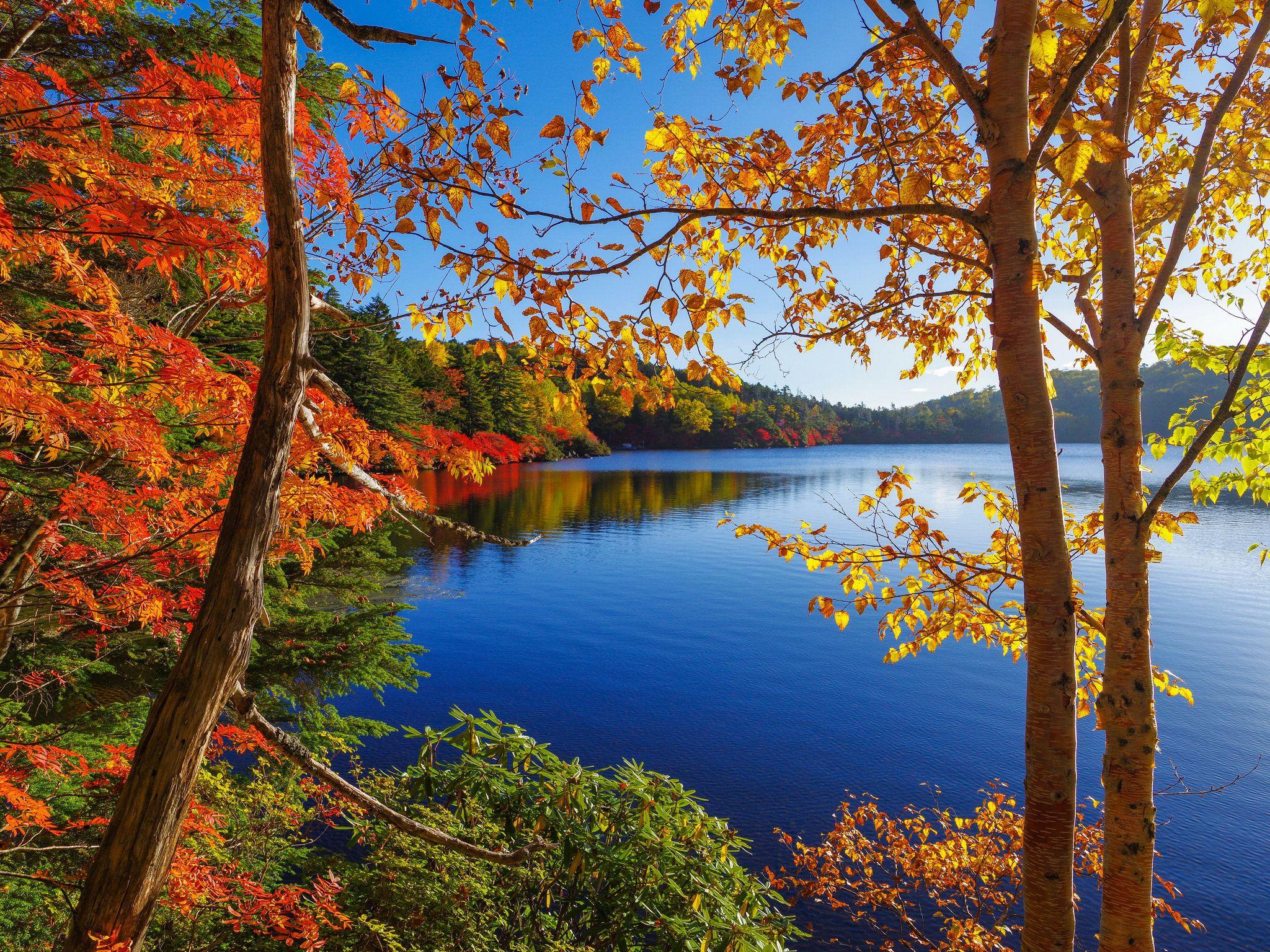 Epingle Par Line Targe Sur Nature Paysage Automne Paysage Lac Images Paysages