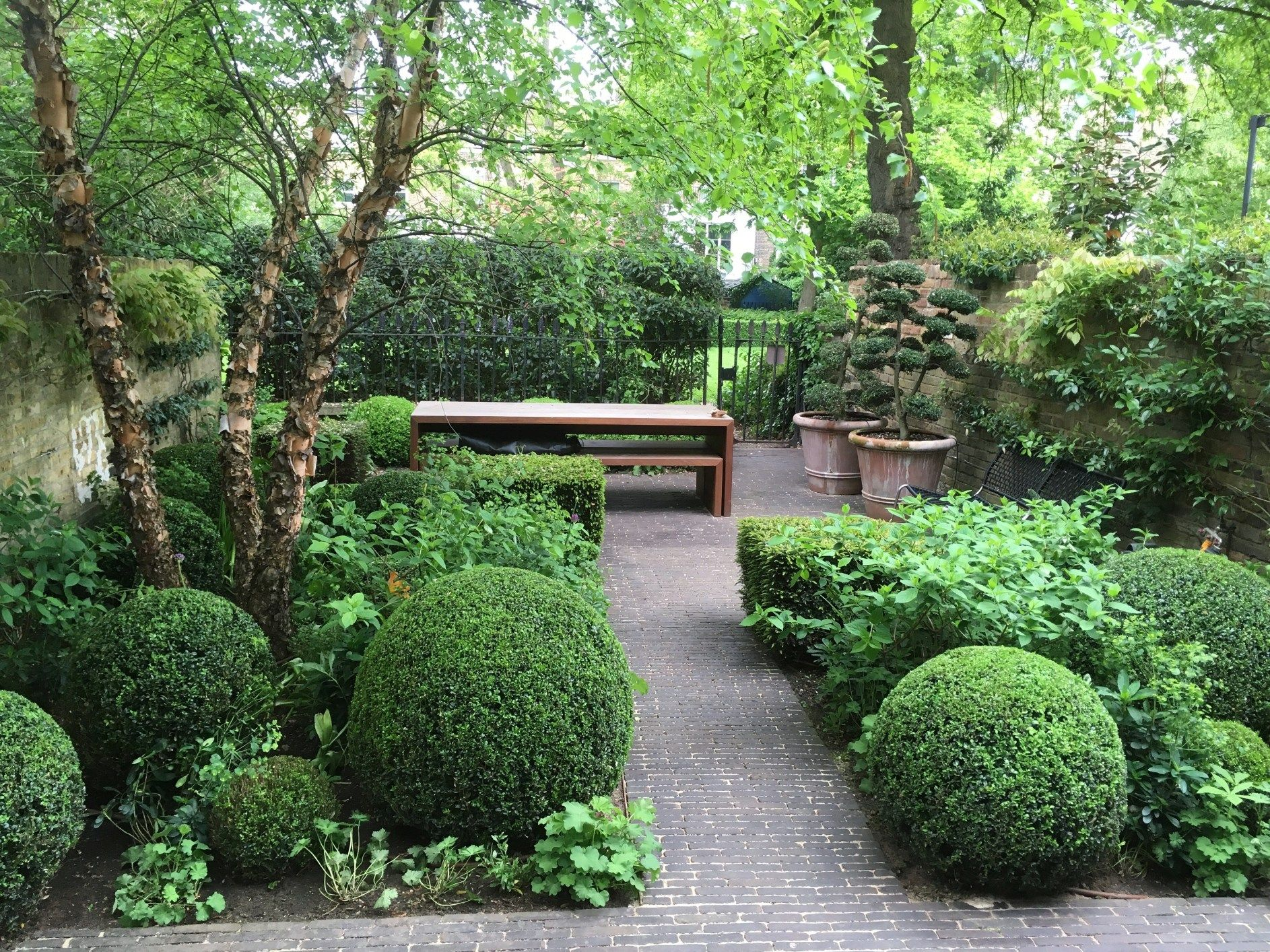 Box Topiary In Notting Hill London James Todman Small Urban Garden Urban Garden Urban Garden Design