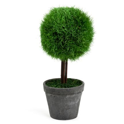 Nice ! Hard to find 'plants' that look good !  Enjoy one decor deal a day from WUSLU ~www.wuslu.com