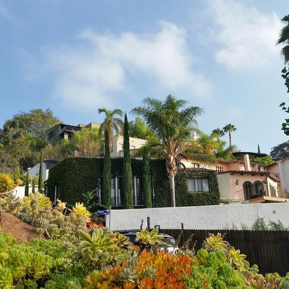 My Hollywood Hills Hood