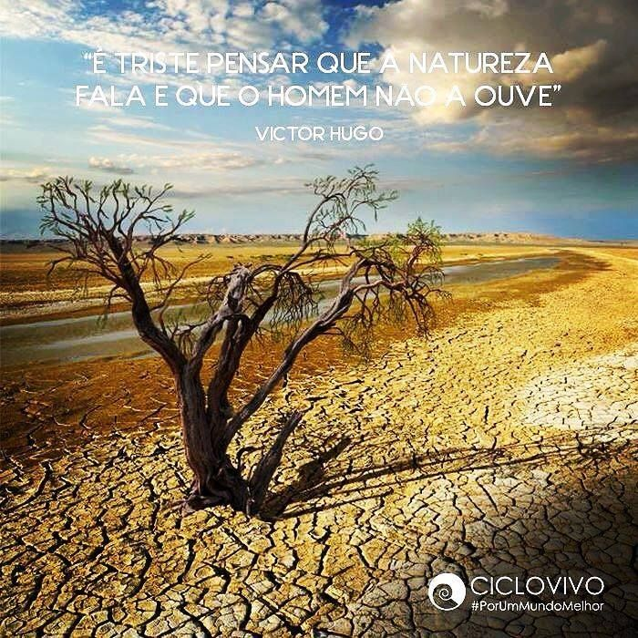 Triste realidade! Bom dia amigos consultores e clientes http://ift.tt/1XESysA #lojavirtual #cuide #sustentabilidade #preserve by amaterra_multiplicadorasuzana http://ift.tt/257Vj7O