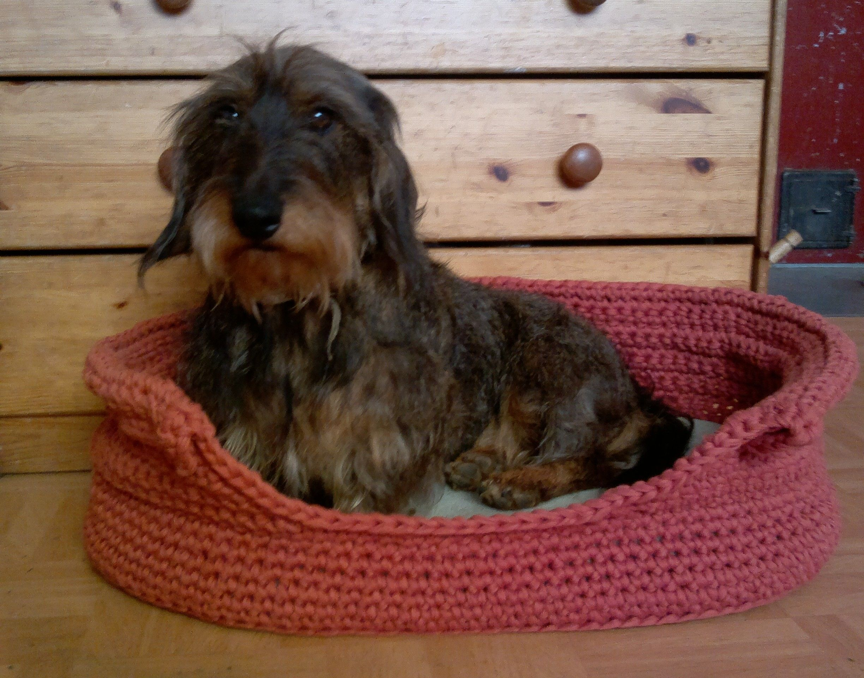 virkattu koiran peti - crochet dog's bed