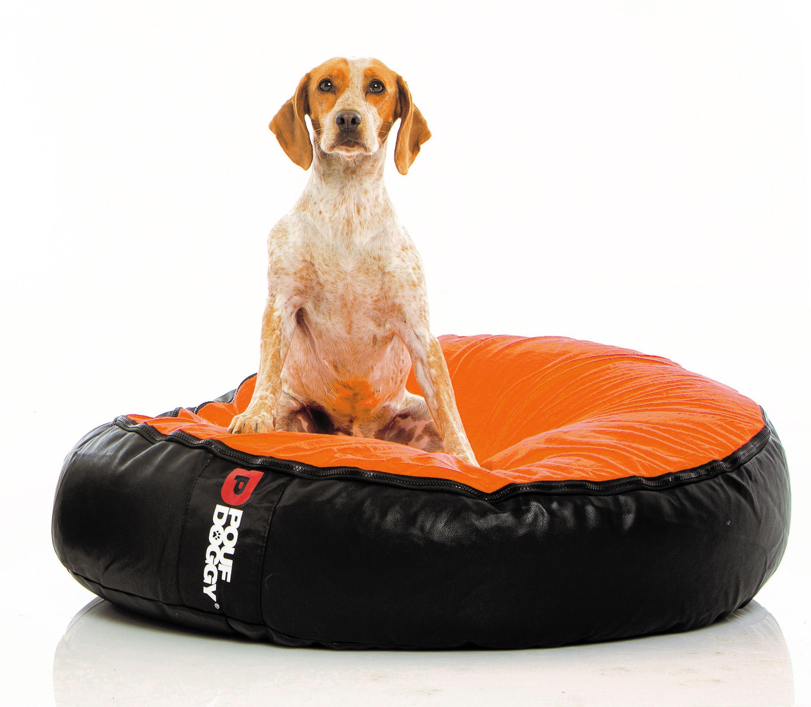 Pouf Doggy Orange Orange bedding, Bean bag furniture