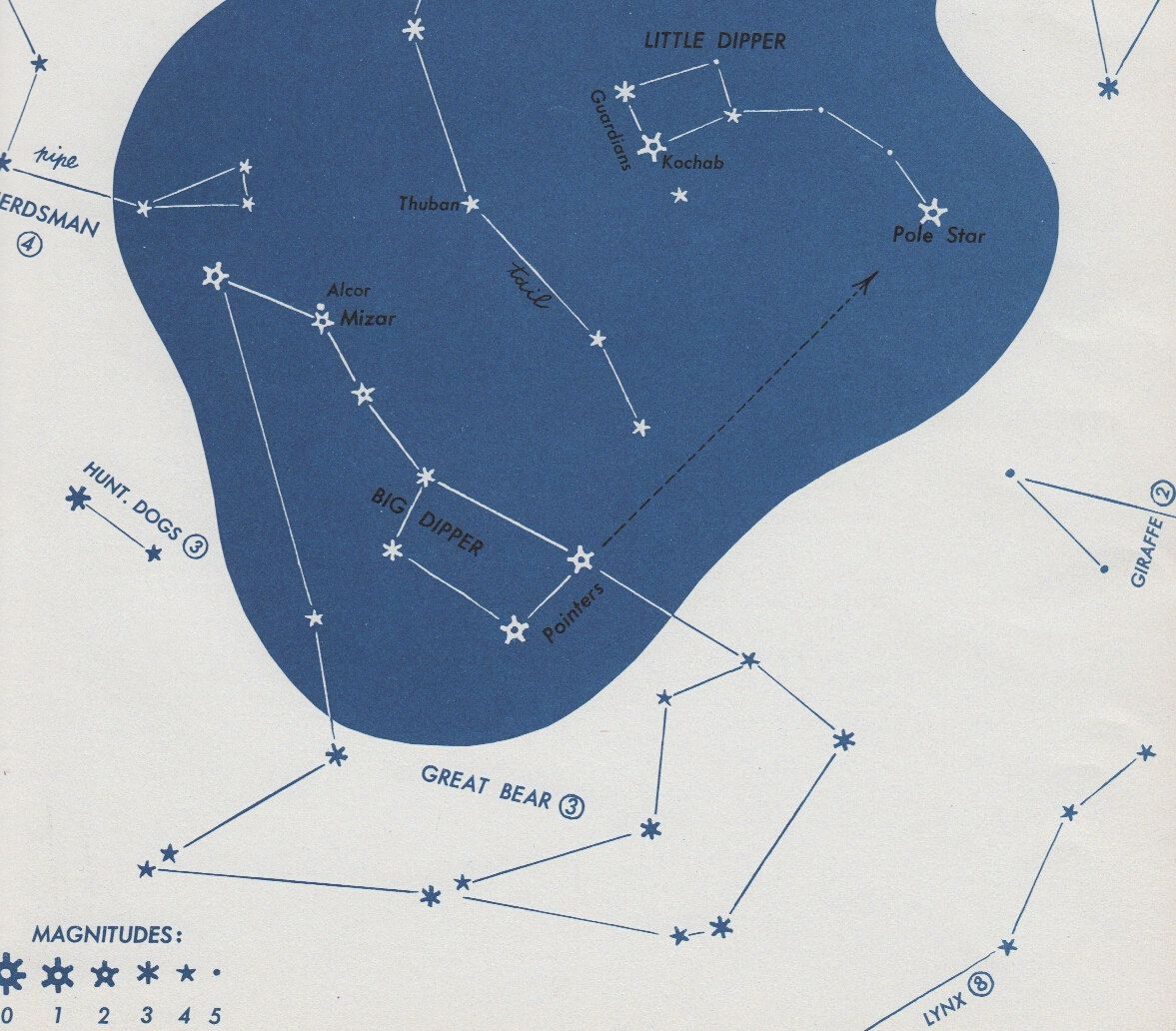 Vintage Star Map Mid Century Astronomy Print And