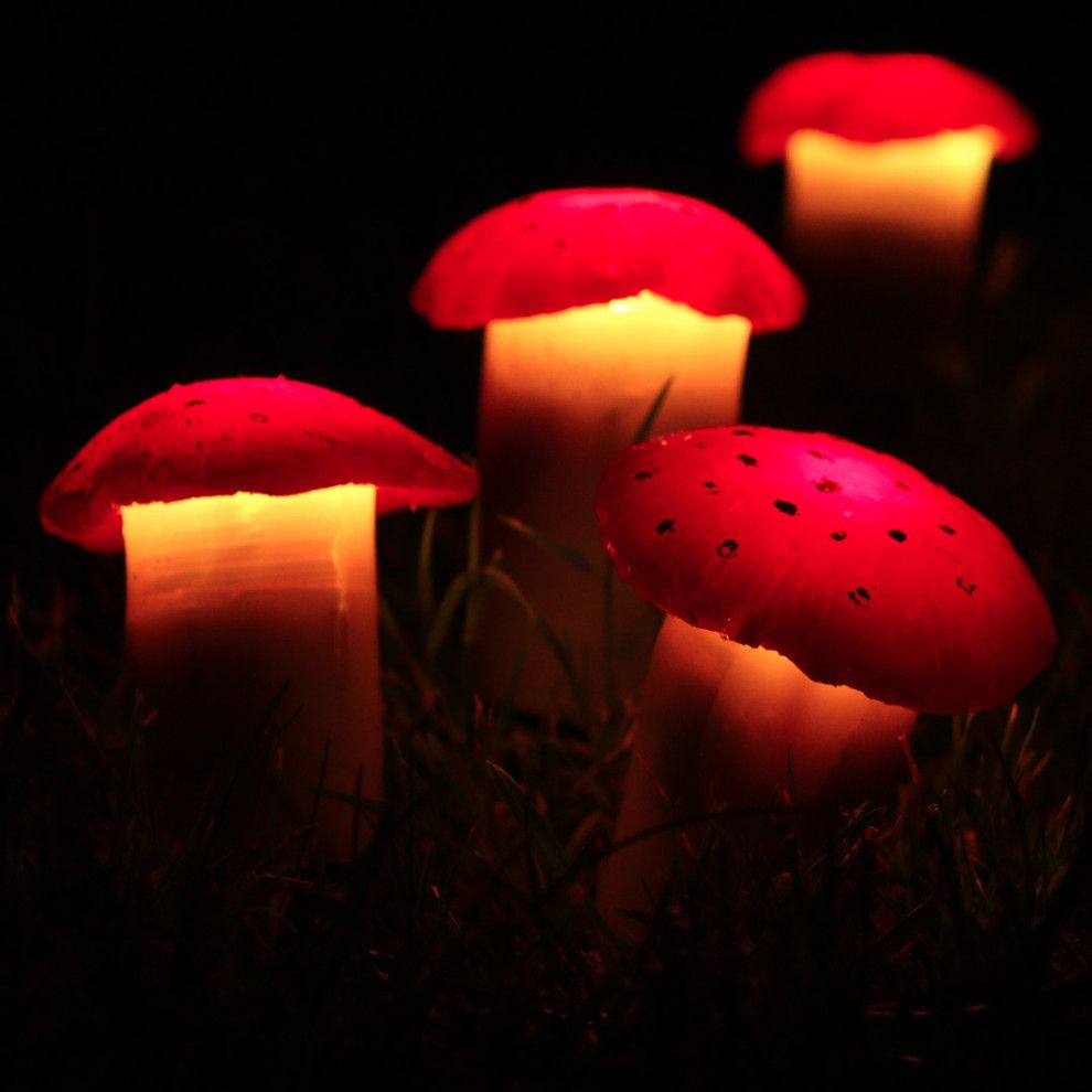 These Solar Powered Mushroom Lawn Lights Are An Adorable Addition To Your Backyard Lawn Lights Solar Light Crafts Mushroom Lights