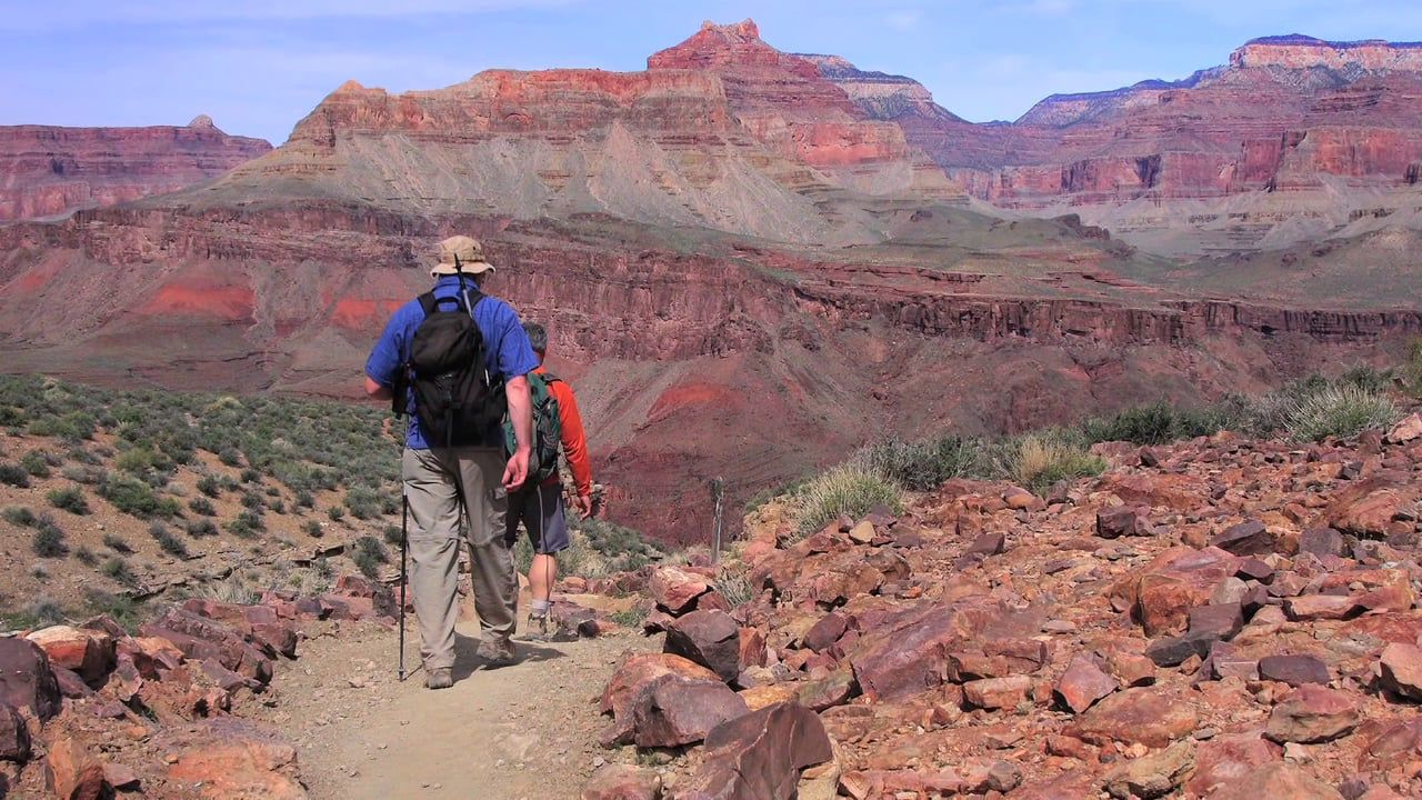 Pink Jeep Tours Grand Canyon South Rim Tour Offerings