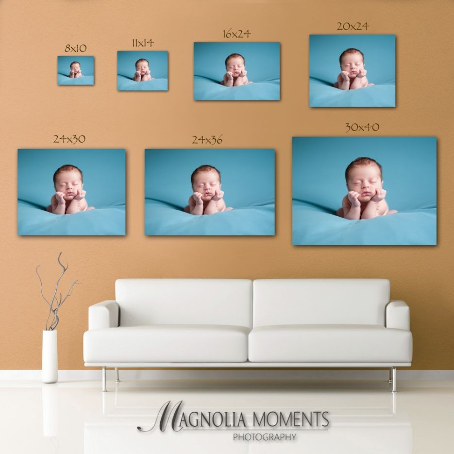 Common photo print sizes how to choose print size philadelphia common photo print sizes how to choose print size philadelphia newborn photographer magnolia solutioingenieria Choice Image