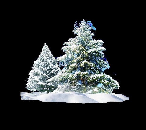 Minimal Black And White Winter Tree Photograph Zen Etsy Black And White Landscape Winter Landscape Photography Winter Trees