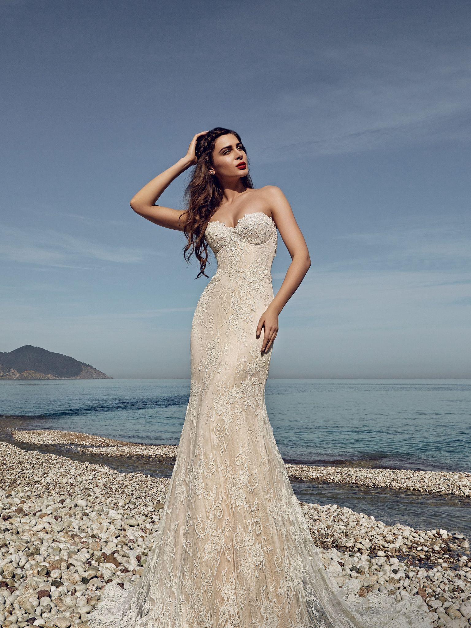 Νυφικα 2017#ρομαντικα νυφικα#νυφικα με εντυπωσιακη πλατη#γοργονε νυφικα#νυφικα με δαντέλα#νυφικα αερινα#νυφικα σε ίσια γραμμή# www.istoriesgamou.gr