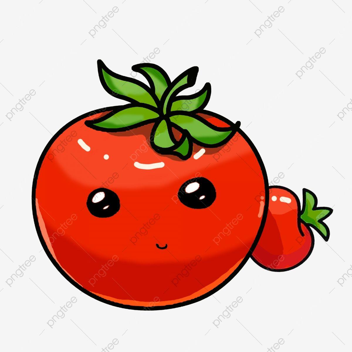 Tomates Preciosos Tomate Rojo Ilustracion Verduras Tomate Ilustracion Cartoon Tomate Tomates Dibujados A Mano Tomate Rojo Png Y Psd Para Descargar Gratis P Tomates Dibujo Manos Dibujo Materiales De Dibujo