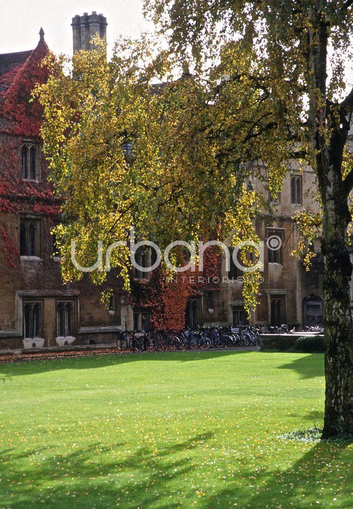 Urbana 15 estudio de interiorismo y decoraci n en bilbao for Decoracion y paisaje s a