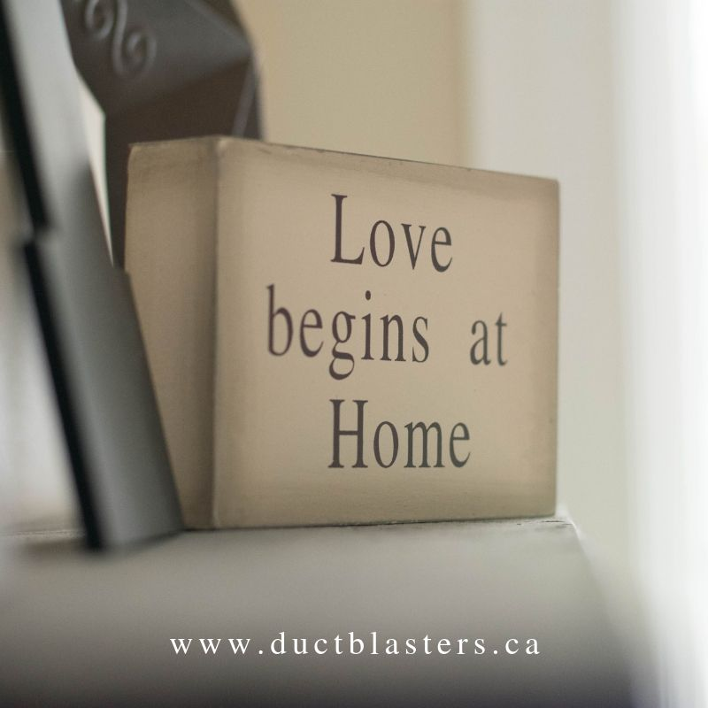 Love Your Home Again Calgary Alberta Canada Housecleaning Ductcleaning Airducting Furnacecleaning Clea How To Clean Carpet Clean Office Duct Cleaning