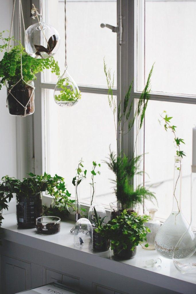 The Minimalist Home x Garden inspiration