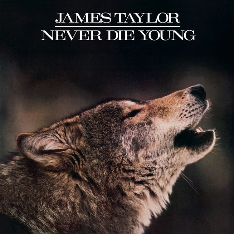 James Taylor Never Die Young On Limited Edition 180g Vinyl Lp Die Young Friday Music Album Covers