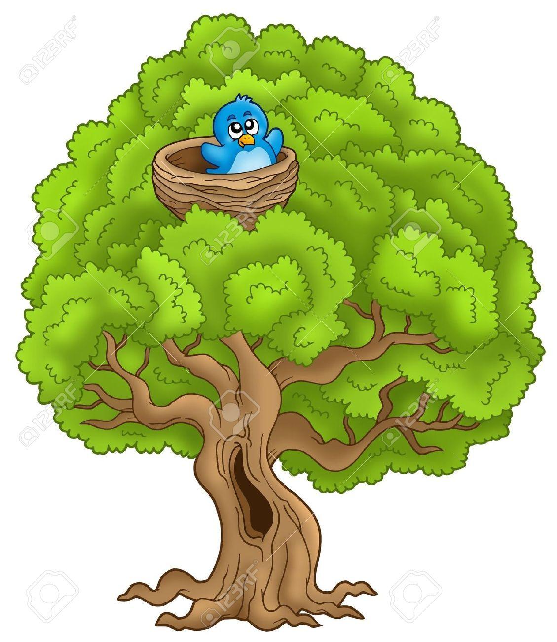 Bird Cartoon Images Bird Cartoon Big Tree With