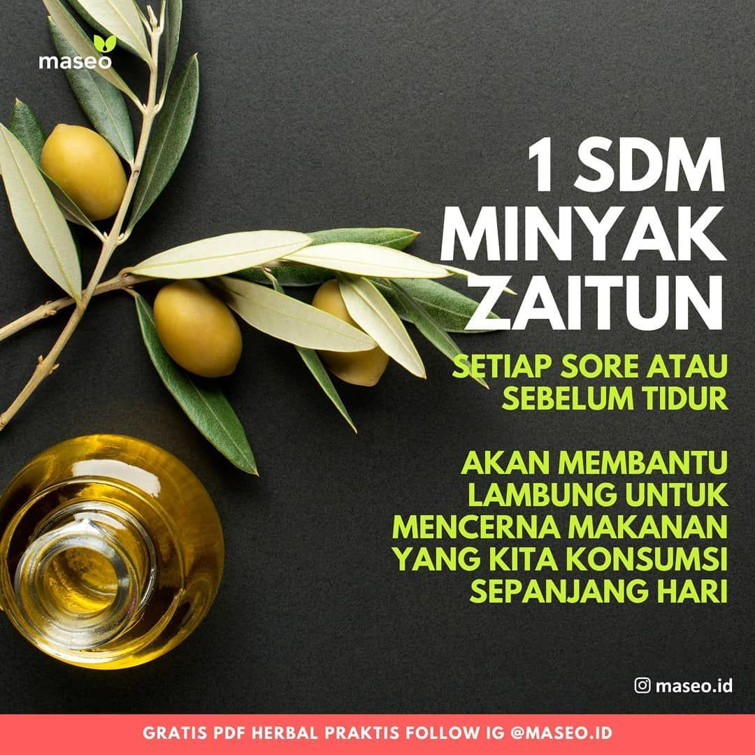 Minum 1 Sendok Makan Minyak Zaitun Setiap Sore Atau Sebelum Tidur Akan Membantu Lambung Untuk Mencerna Makanan Yang Kita Konsu Minyak Zaitun Zaitun Makanan