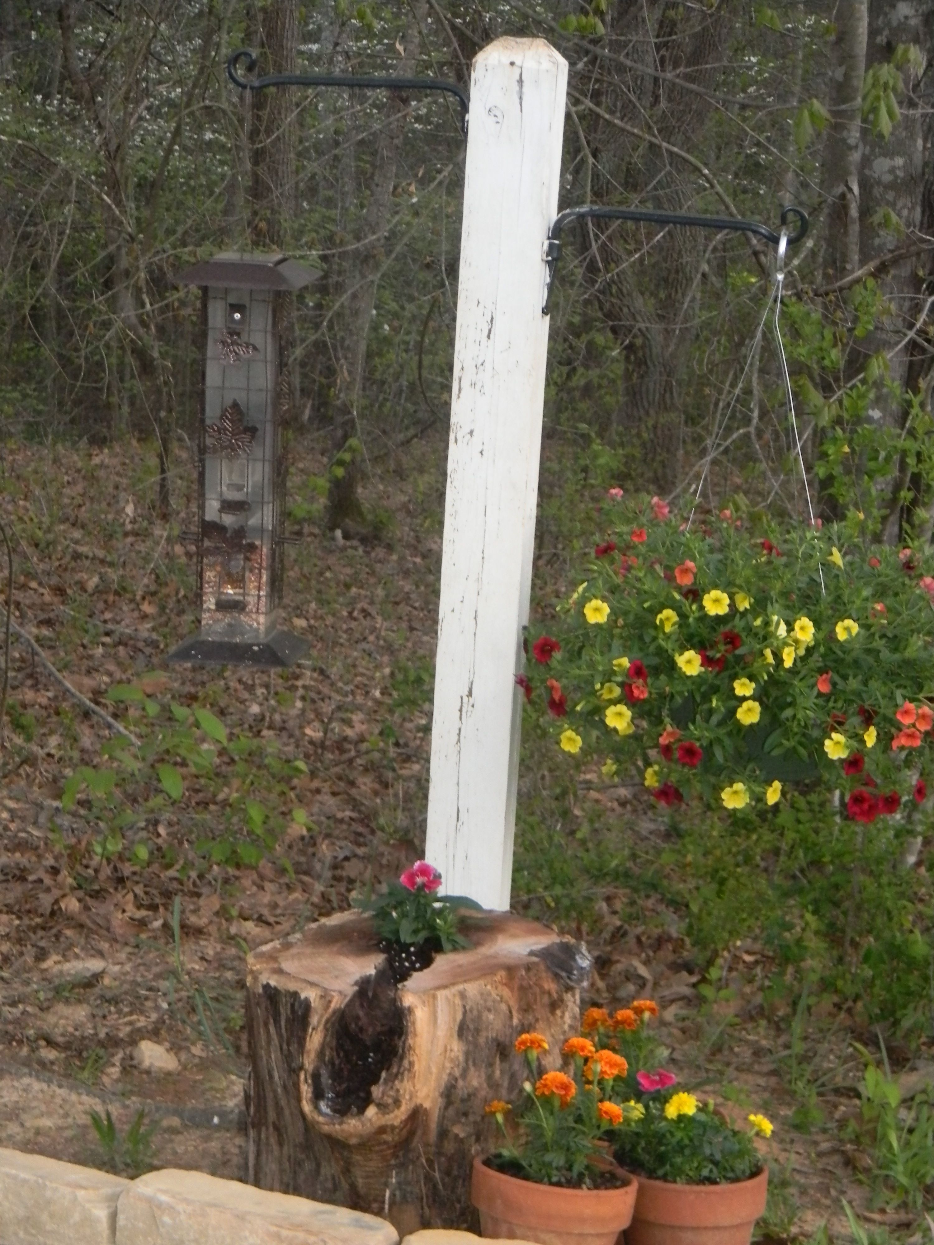 cute display in my backyard, 4x4 post with hanging basket hooks ...