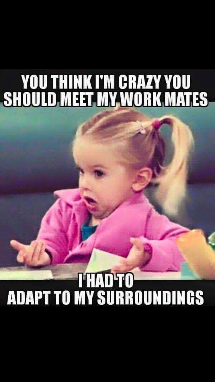 Work Mates Teacher Humor Teacher Memes Teaching Memes