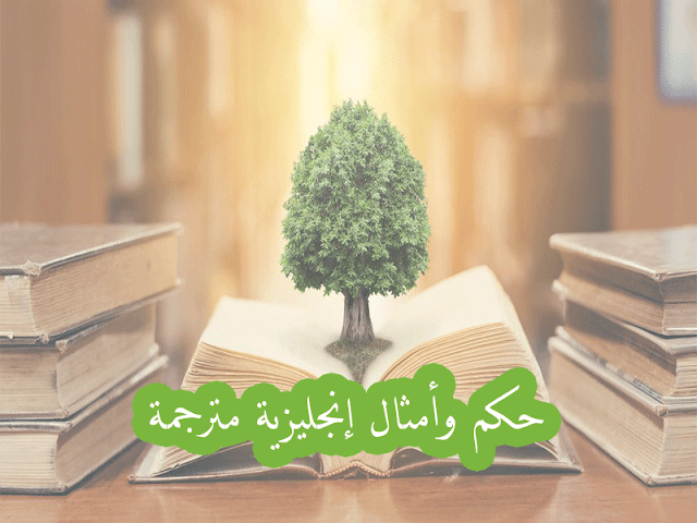 حكم وأمثال إنجليزية مترجمة للمبتدئين Proverbs English Proverbs Herbs