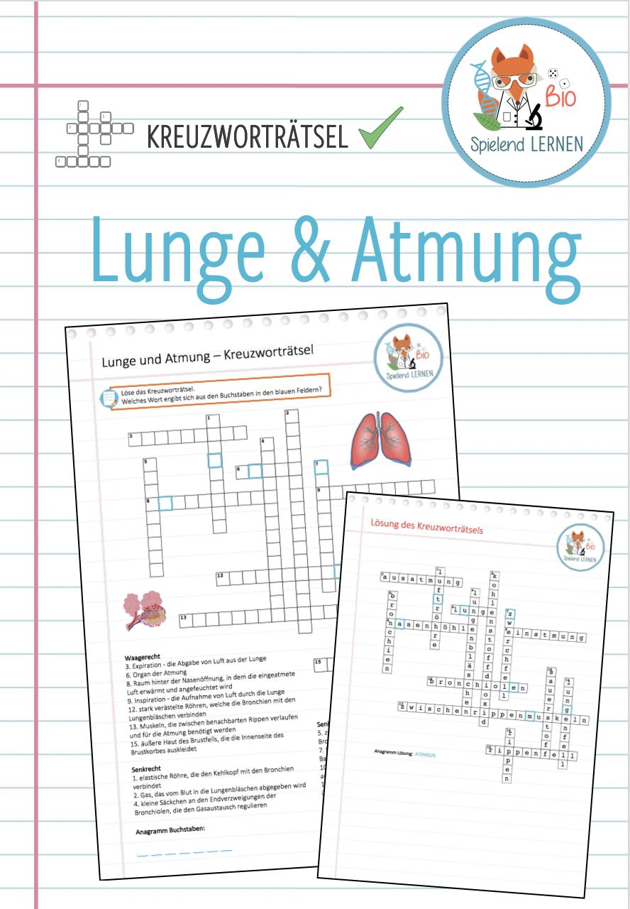 Lunge Atmung Kreuzwortratsel Unterrichtsmaterial Im Fach Biologie Lunge Lernen Atmung