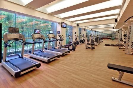 home ideas  modern home design gym interior design  gym