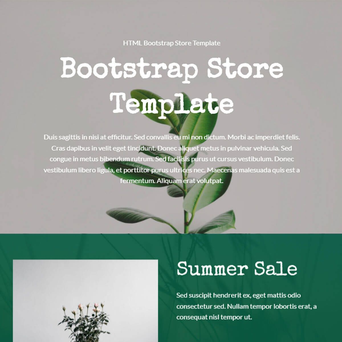 HTML Bootstrap Store Template