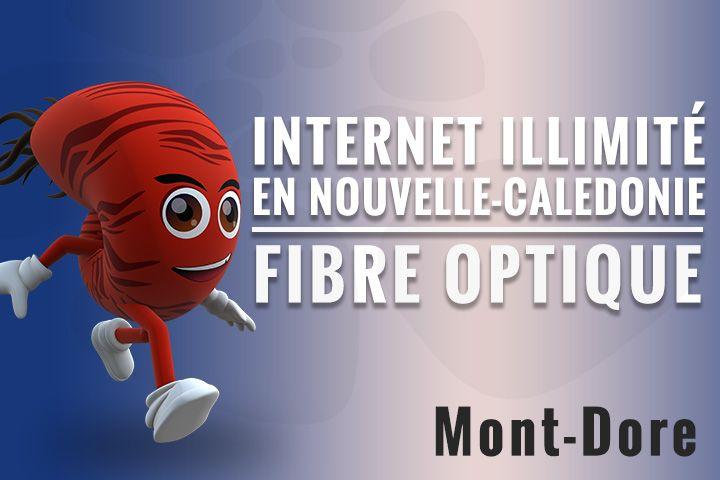 Vous êtes une Famille, un Geek ou une entreprise ? Découvrez l'internet au Mont-Dore en souscrivant chez Nautile à un forfait fibre optique.