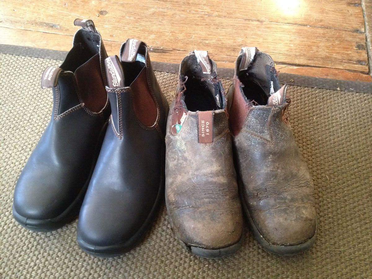I Ve Been Wearing Blundstone Boots For Many Years And I Have Never Been Disappointed By Any Of The Many Pairs I Have Owned Blundstone Boots Boots Blundstone
