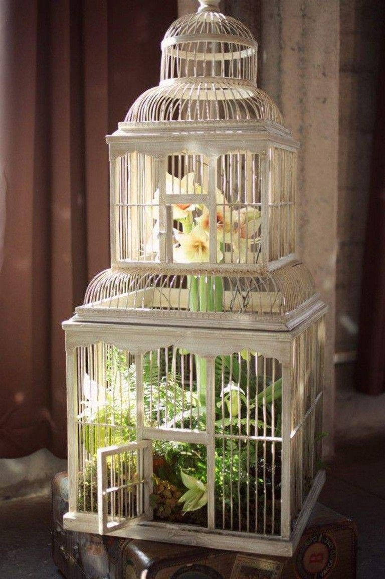20 Wonderful Bird Cage Ideas For Your Garden Page 17 Of 26