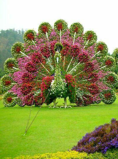Pin de Nilima Bendale en Flower Garden \ Sculptures Pinterest