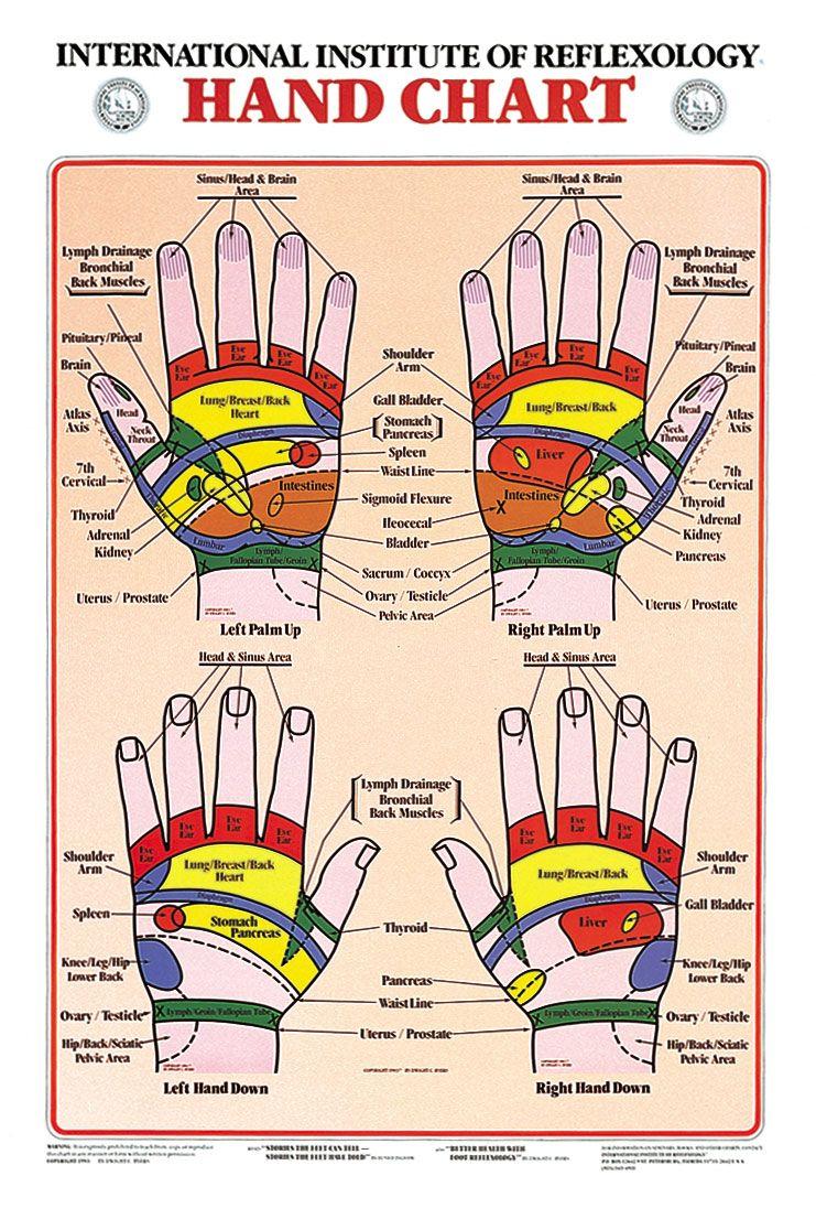Hand reflexology chart hand reflexology reflexology and chart hand reflexology chart pooptronica