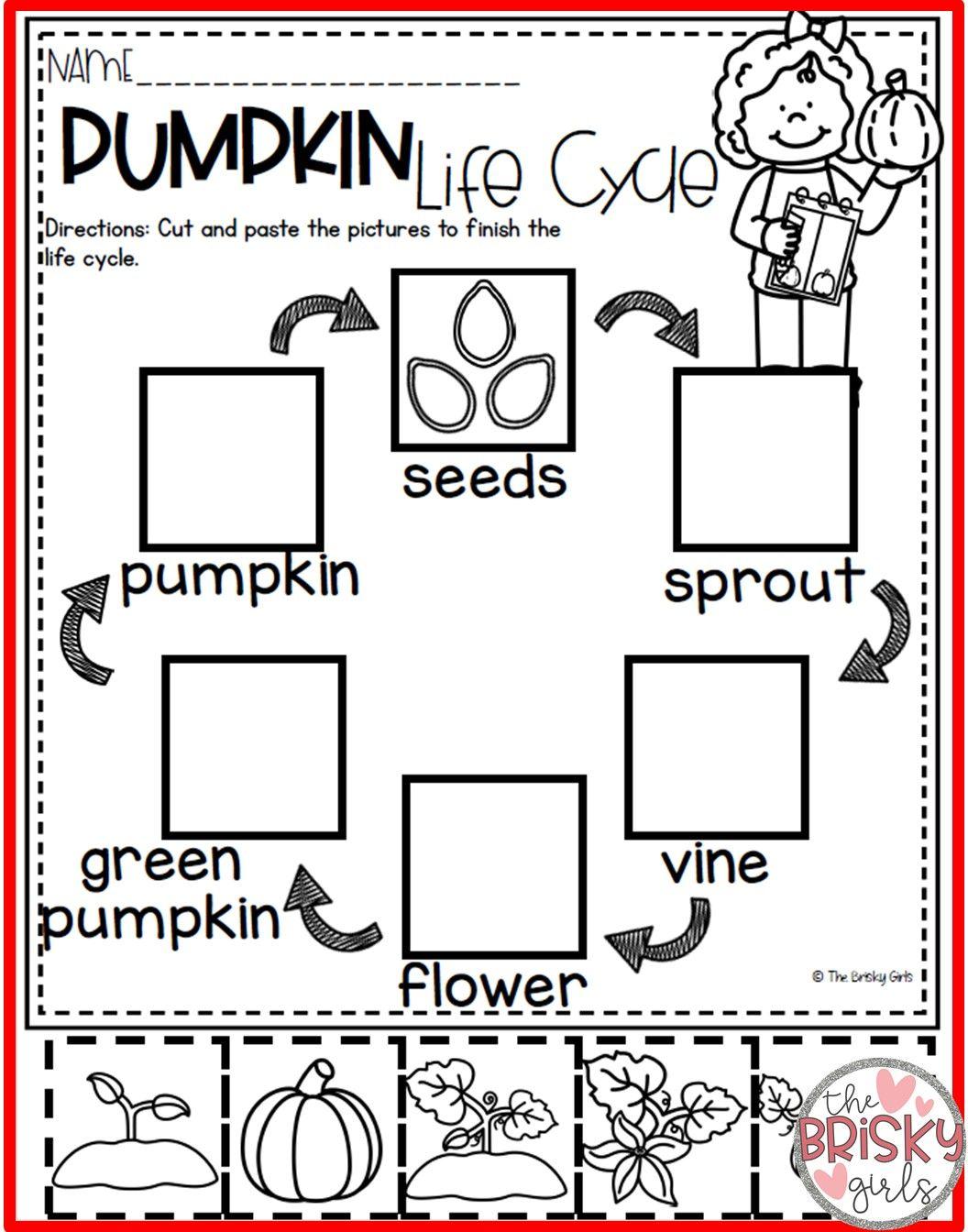 Pumpkin Activities Preschool