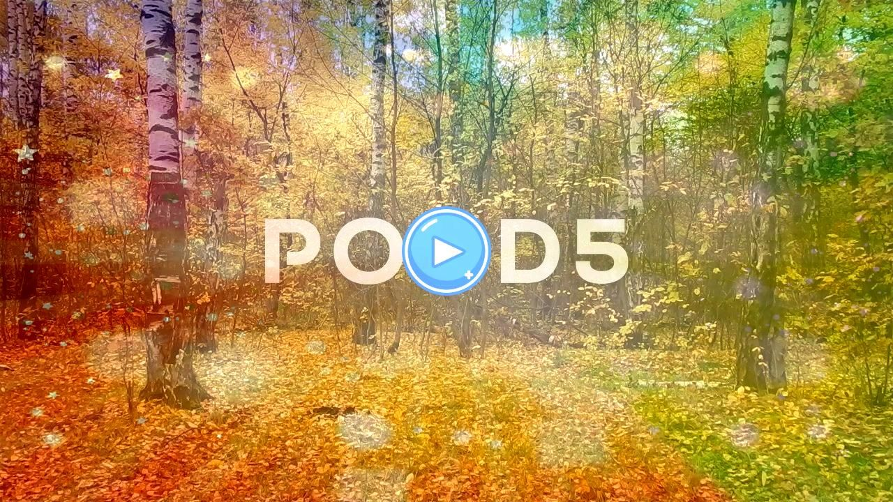 leaf fall day in the nature reserve in the forest Stock Footage falldayAutumnleafAutumn leaf fall day in the nature reserve in the forest Stock Footage falldayAutumnleaf...