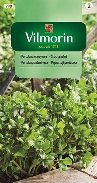 Portulaka Warzywna 2g Sadowniczy Pl Plants Herbs