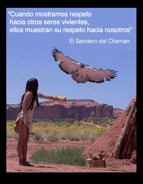Respeto El Sendero Del Chaman Proverbio Nativo