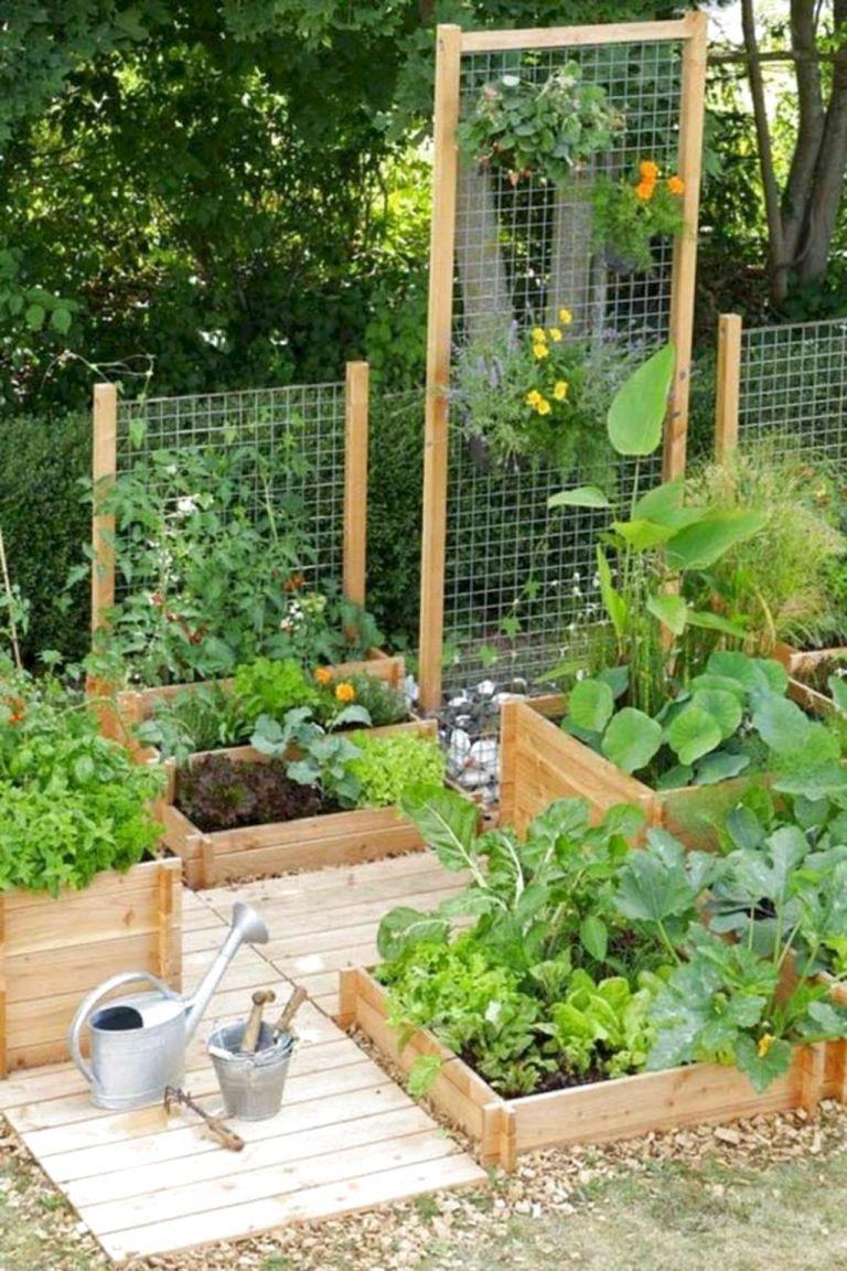 Just Another WordPress Site Vegetable Garden Design Garden Layout Vegetable Backyard Vegetable Gardens