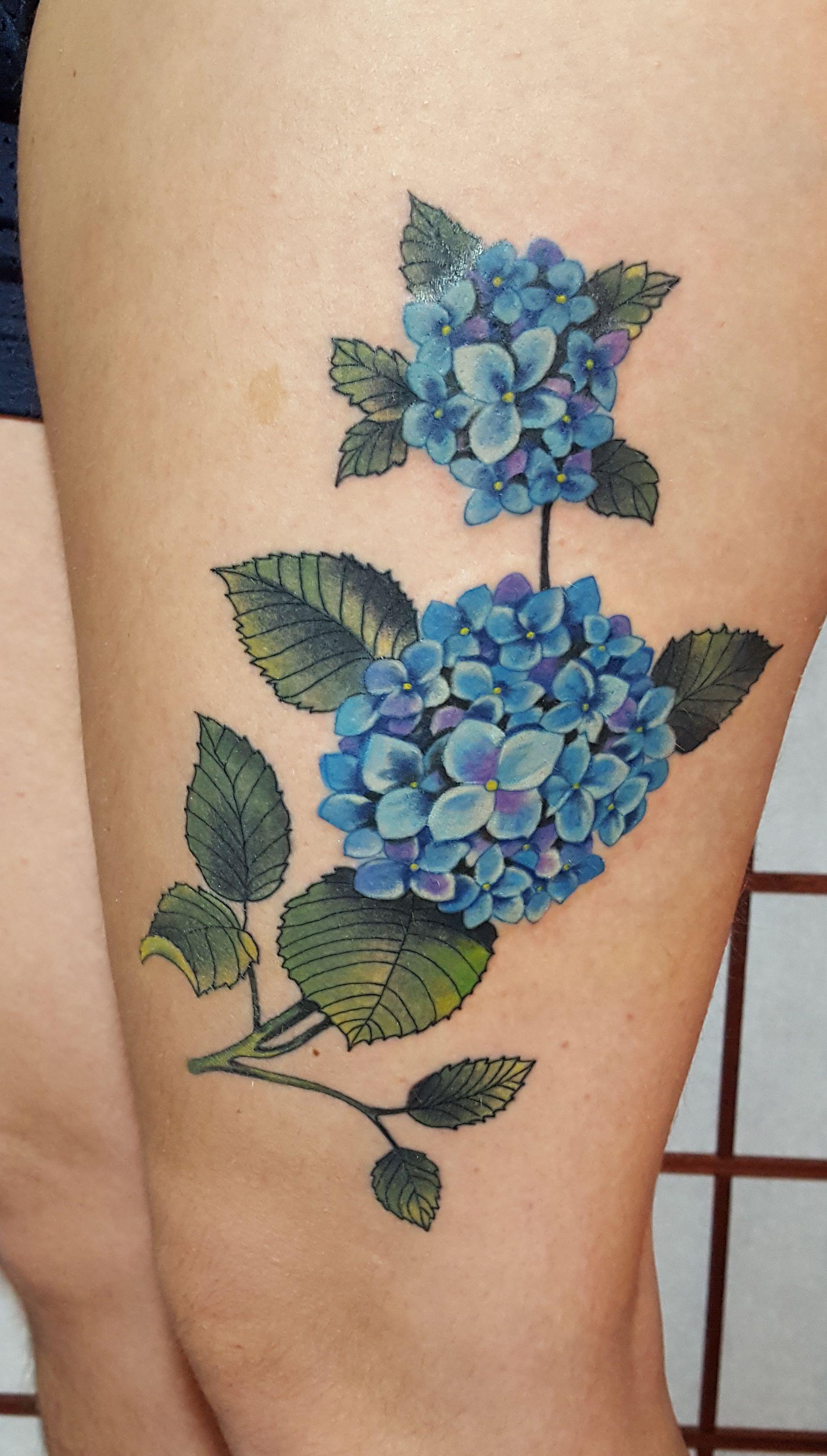 Image result for hydrangea tattoo | Ideas for Tattoo Fix | Hydrangea ...