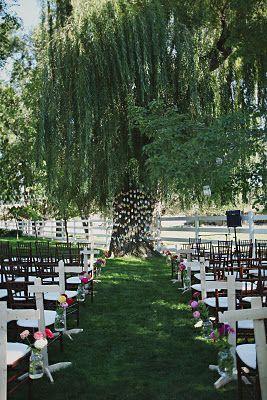 Willow Tree Wedding Minus The Decor
