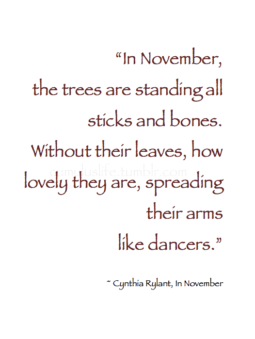 "November Quotes Autumn ~ ""In November, the trees are standing all sticks and bones  November Quotes"