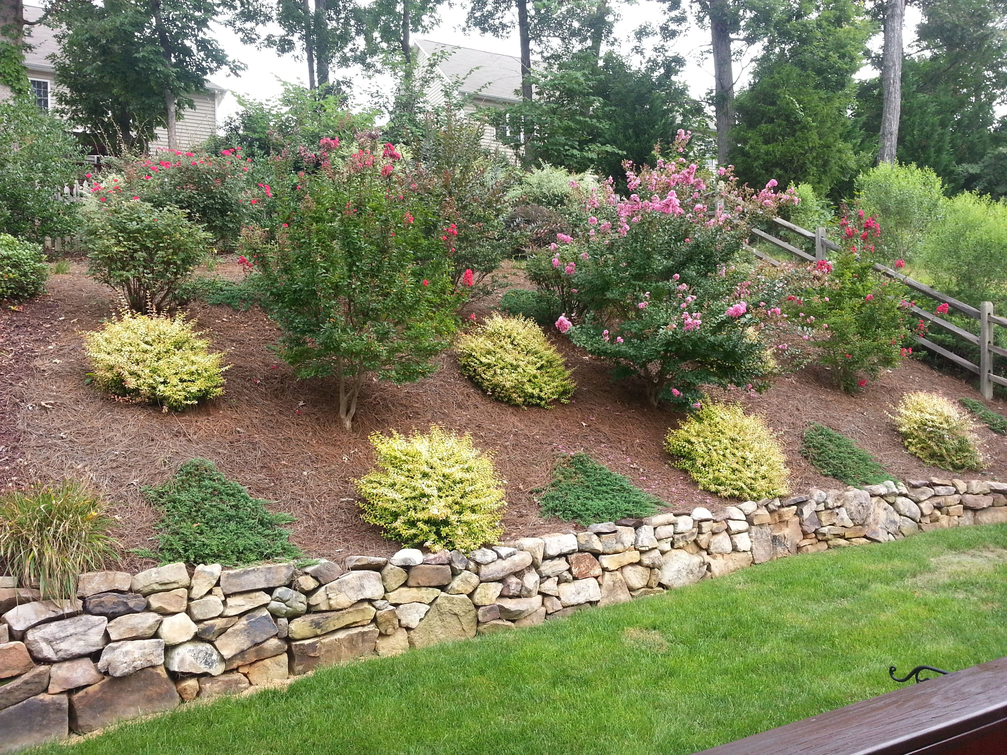 Beautifully Landscaped Backyard Backyard Hill Landscaping Backyard Landscaping Designs Hillside Landscaping