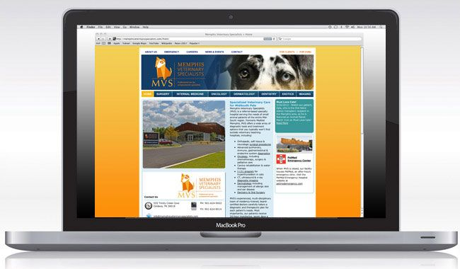 Memphis Veterinary Specialists Mvs Is A Referral Based Specialty Animal Hospital Located In Cordova Financial Information Content Management System Memphis