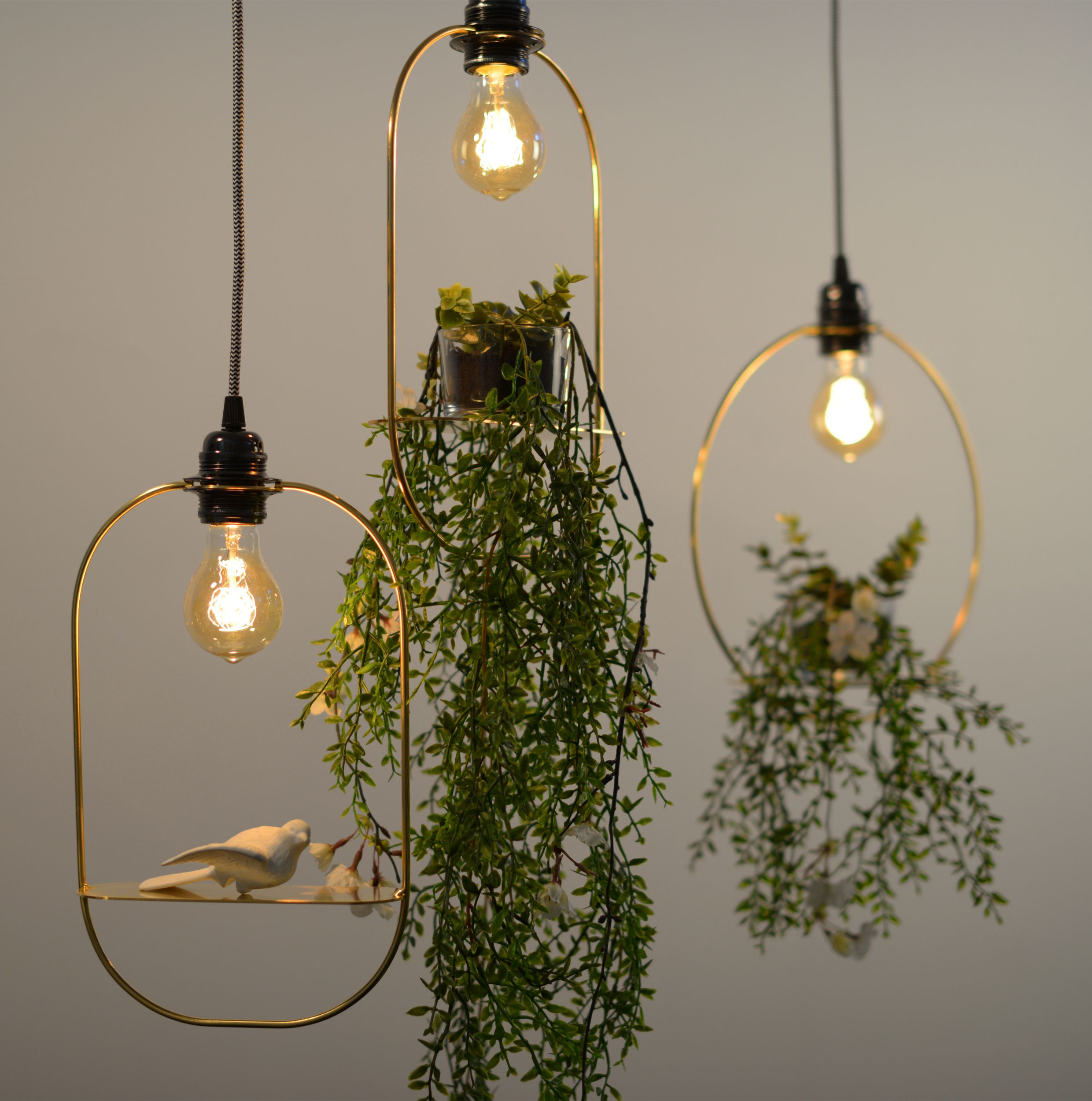 Hanging Garden Pendant Light From Satelight Design Pendant Lighting Circle Pendant Light Lighting Collections