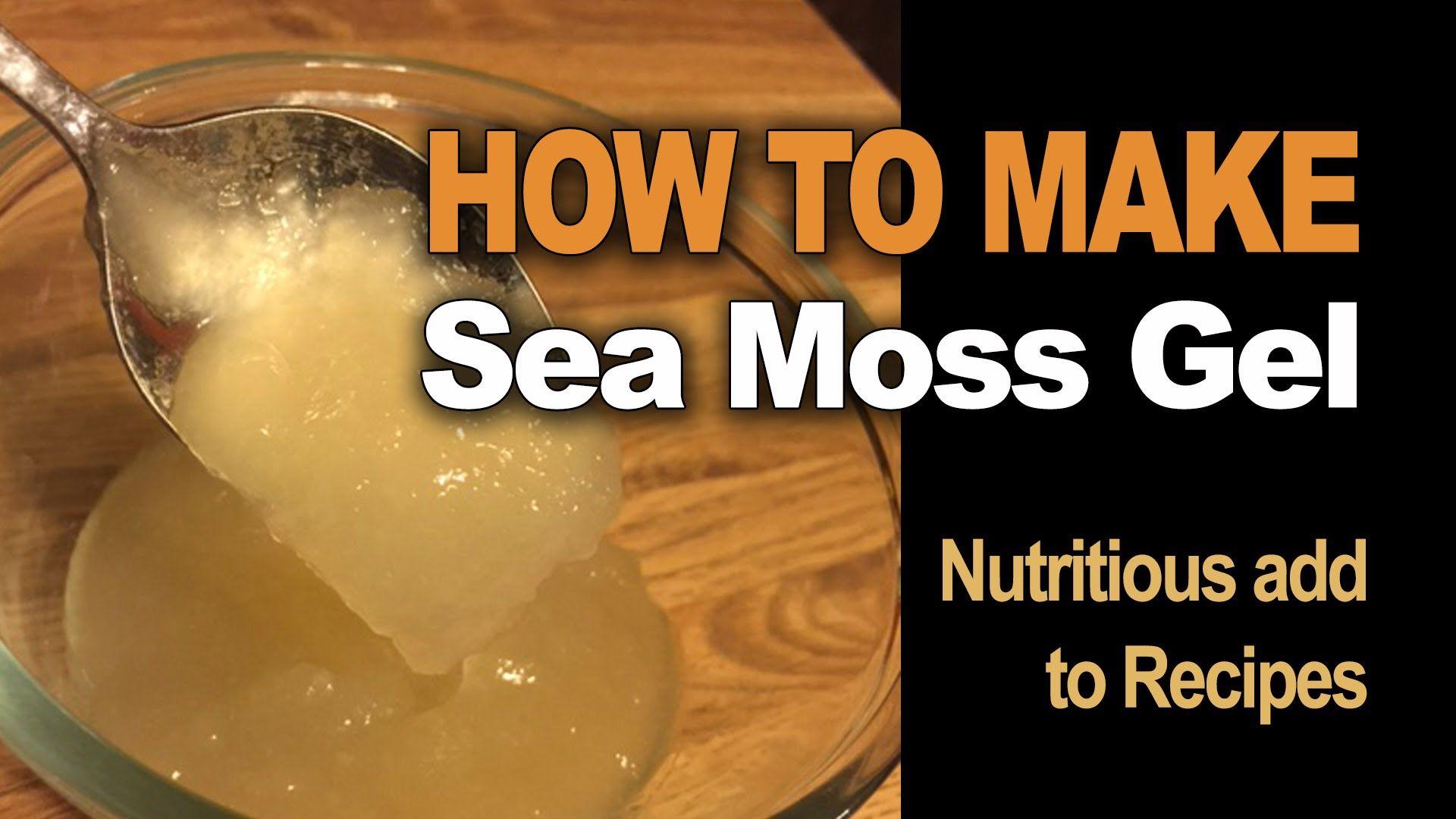 How to make Sea Moss Gel  Sea moss, Dr sebi alkaline food, Gel