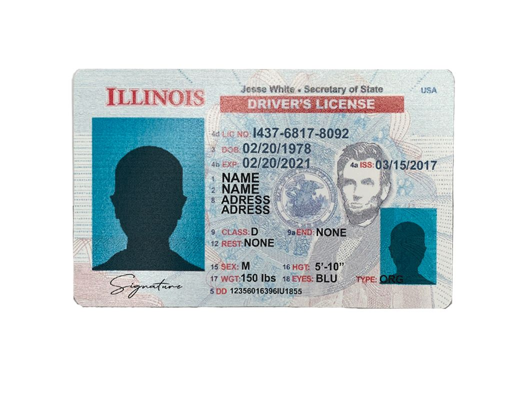Illinois Driver License Psd Template New Everythingallhere Store Drivers License Id Card Template Credit Card Images Fake drivers license template photoshop