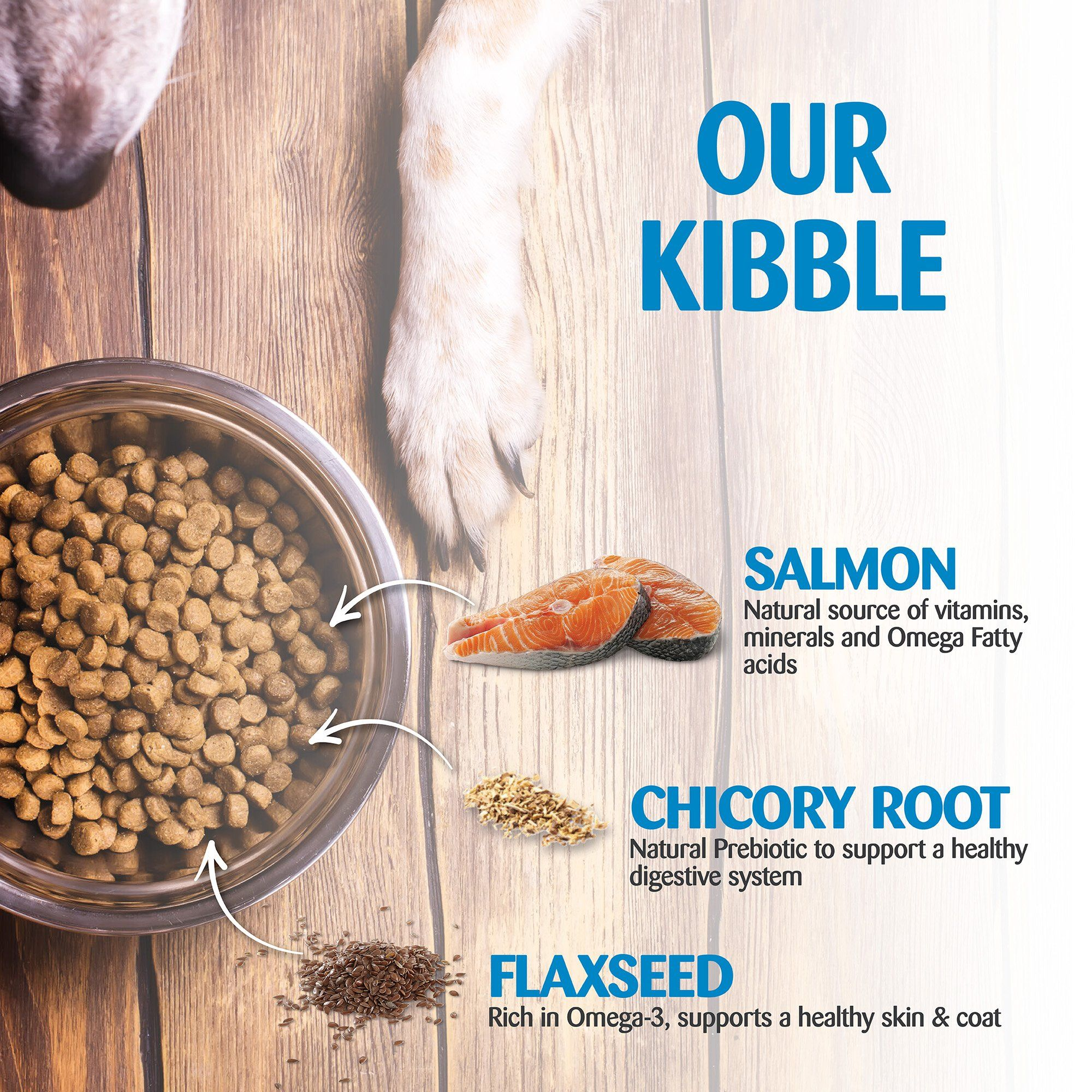Wellness Simple Natural Grain Free Dry Limited Ingredient Small Breed Dog Food Salmon Hashtag Small Breed Dog Food Dog Food Recipes Dry Dog Food