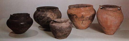 Potten en vazen uit hunebedden thema prehistorie for Potten en vazen